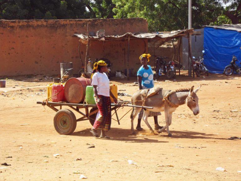 transport avec âne